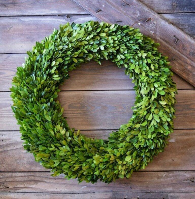 """20"""" Preserved Boxwood Wreath   Decorating Ideas And ..."""
